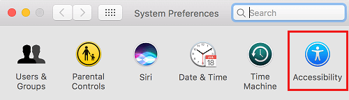 Accessibility Option in System Preferences Screen
