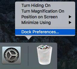 Dock Preferences Option on Mac