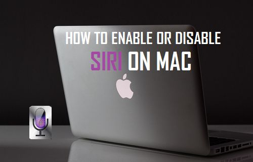 How to Enable or Disable Siri on Mac
