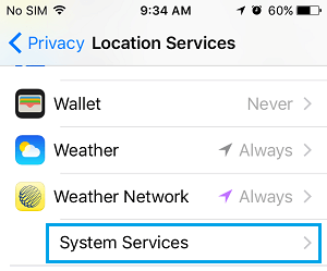 System Services Tab on iPhone Location Services Screen