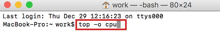 Top -o CPU Command in Terminal on Mac
