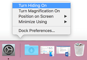 Turn Hiding On Option on Mac