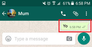 WhatsApp Message Sent Tick Marks