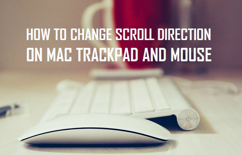 How to Change Scroll Direction on Mac Trackpad and Mouse