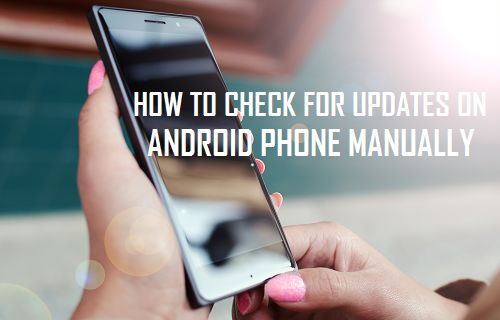 Check For Updates on Android Phone Manually