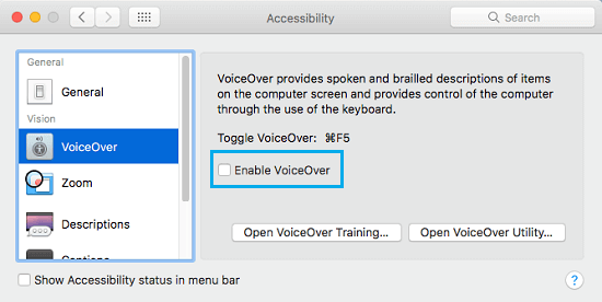 Disable VoiceOver on Accessibility Screen of Mac