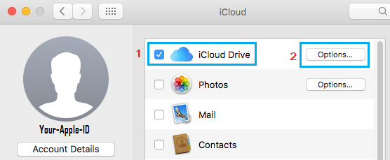 iCloud Drive Options Tab on Mac