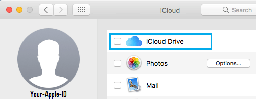 Provide Mac with iCloud Drive Access
