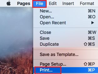 File Print Option on Mac Menu