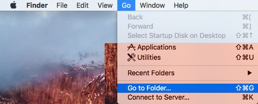 Go to Folder Option on Mac