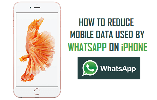 how to minimize data usage on iphone how to reduce mobile data used by whatsapp on iphone 20175