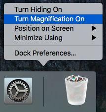 Turn Magnification On Option on Mac