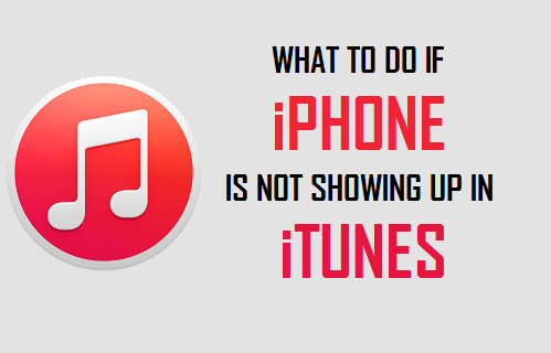 What to Do If iPhone is Not Showing Up in iTunes