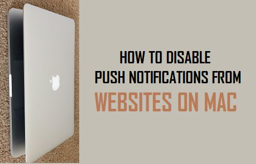 How to Disable Push Notifications From Websites On Mac