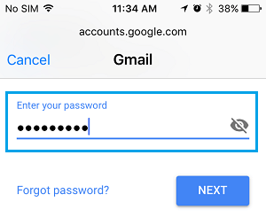 Enter Gmail Password on iPhone