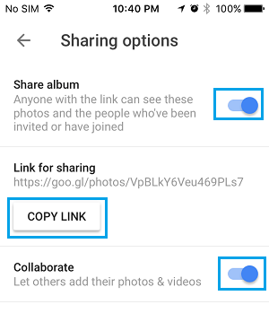 Sharing Options Screen in Google Photos App