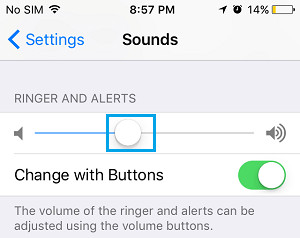 Adjust Ringer Alerts Volume on iPhone