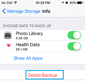 Delete Backup Option on iPhone