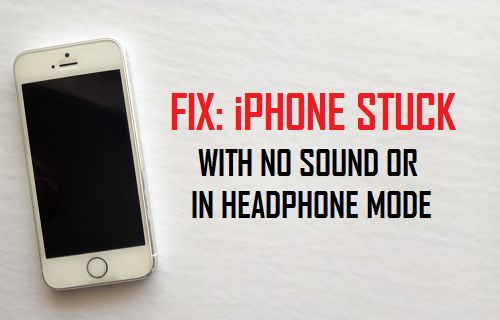 Fix: iPhone Stuck With No Sound Or in Headphone Mode