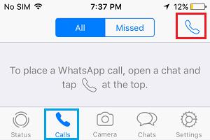 WhatsApp Calls Option on iPhone