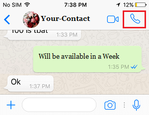 Place WhatsApp Call from Chats Screen on iPhone