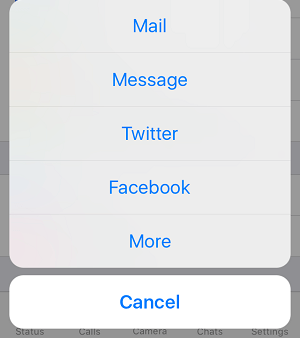 Mail, Message and Other Options to Invite People to WhatsApp On iPhone