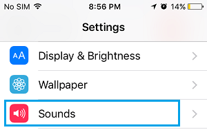 Sounds Tab On iPhone Settings Screen