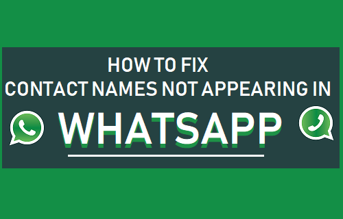 Contact Names Not Appearing in WhatsApp