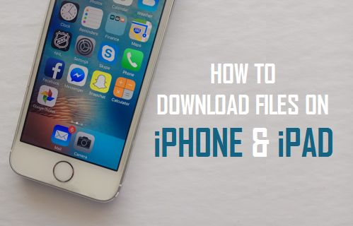 Download Files On iPhone and iPad