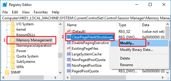 Memory Management Folder in Windows 10 Registry Editor Screen