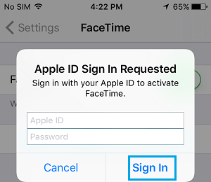Sign In With Apple ID to Activate FaceTime On iPhone
