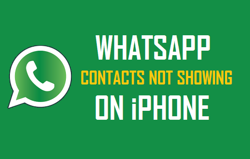 how to add phone contacts to whatsapp in iphone
