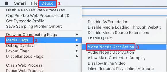 Media Flags Video Needs User Action option on Mac Safari Browser