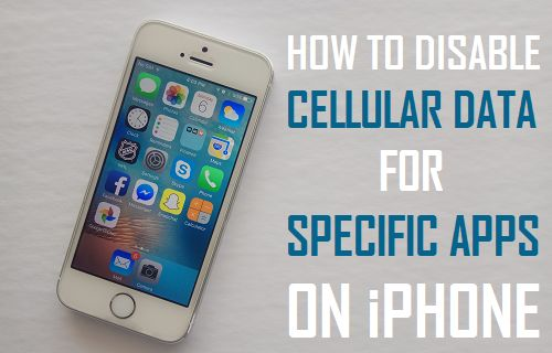 How to Disable Cellular Data for Specific Apps on iPhone
