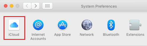 iCloud Option in System Preferences screen on Mac