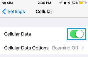 Enable Cellular Data on iPhone