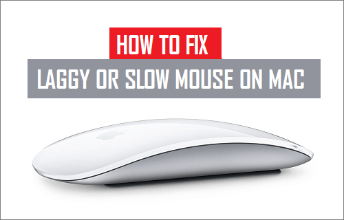 Fix Laggy or Slow Mouse on Mac