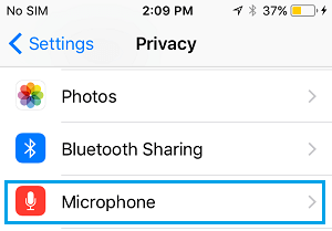 Microphone Option on iPhone Privacy Screen