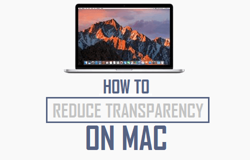 Reduce Transparency on Mac