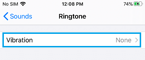 Vibration Pattern Settings Option on iPhone
