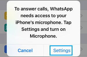WhatsApp Popup on iPhone Requesting Access to Microphone
