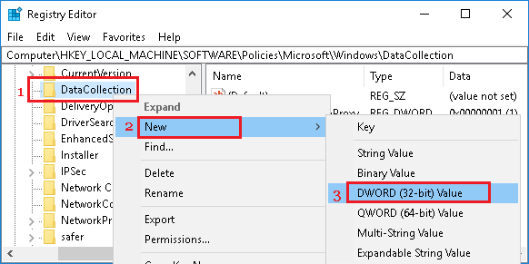 Create New DWORD in Data Collection