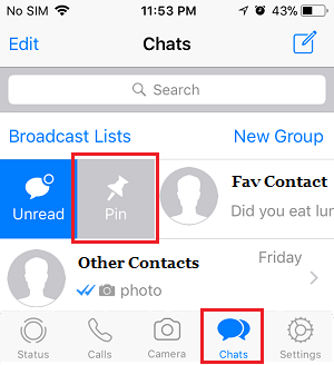 Pin Chats in WhatsApp on iPhone
