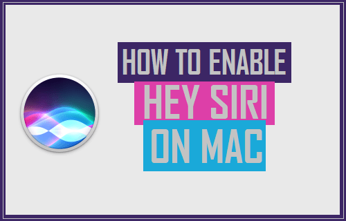 Enable Hey Siri On Mac