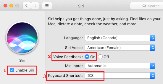Enable Voice Feedback and Create Keyboard Shortcut for Siri on Mac