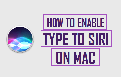 How to Enable and Use Type to Siri on Mac