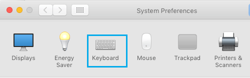 Keyboard Option in System Preferences Screen on Mac