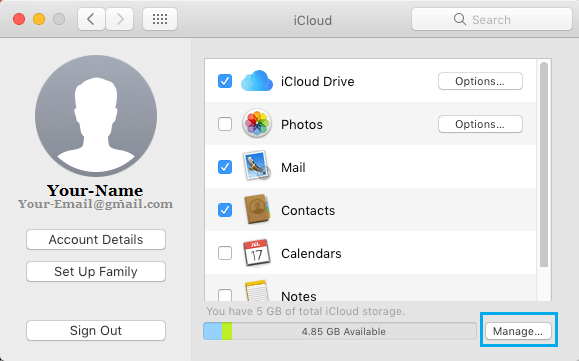 Manage Storage Option in iCloud Settings Screen on Mac