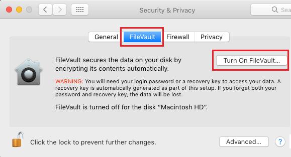 Turn on FileVault Option on Mac