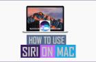 How to Use Siri On Mac